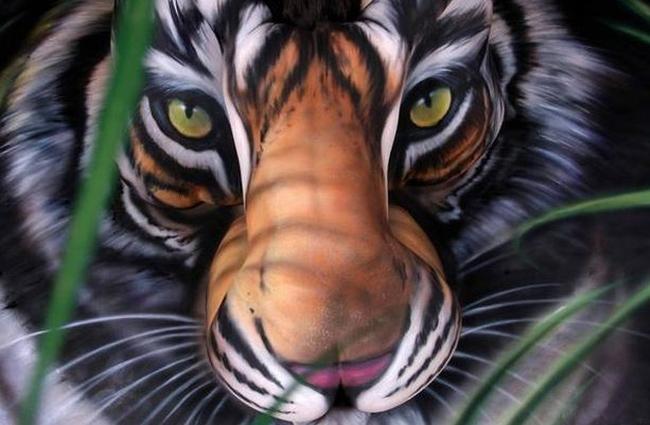 Спасти тигров с помощью краски, Позы человека для рисования, Рисовать, Рисо